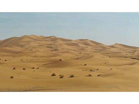 どこまでも広がる砂漠