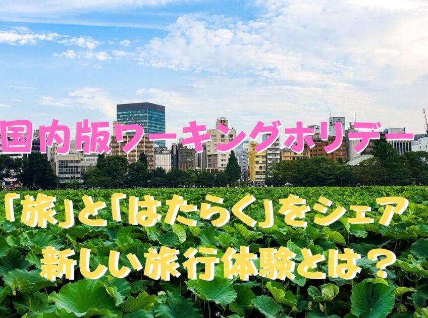 野菜畑と街並みの写真